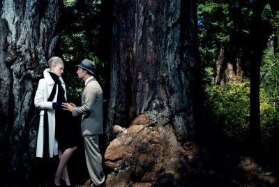 calcuer l'âge d'un arbre en deux leçons