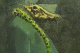 franquin-monstre
