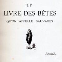deluermoz-demaison-livre-betes-appelle-sauvages-02-b