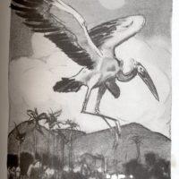deluermoz-demaison-livre-betes-appelle-sauvages-12-b