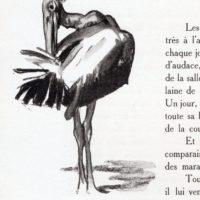 deluermoz-demaison-livre-betes-appelle-sauvages-13-b