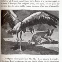 deluermoz-demaison-livre-betes-appelle-sauvages-14-b