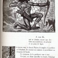 deluermoz-demaison-livre-betes-appelle-sauvages-17-b