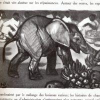 deluermoz-demaison-livre-betes-appelle-sauvages-21-b
