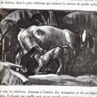 deluermoz-demaison-livre-betes-appelle-sauvages-27-b