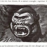 deluermoz-demaison-livre-betes-appelle-sauvages-35-b