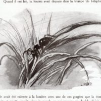 deluermoz-demaison-livre-betes-appelle-sauvages-41-b