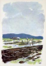 beuville-couleurs-livre-nature-01