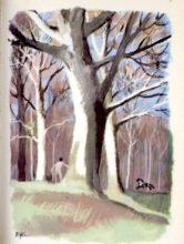 beuville-couleurs-livre-nature-07