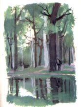 beuville-couleurs-livre-nature-08