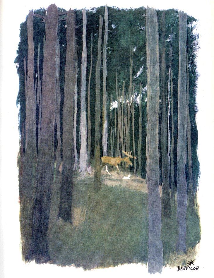beuville-couleurs-livre-nature-14