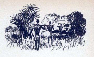 beuville-nb-livre-nature-17