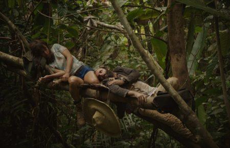 l'amour dans les branches
