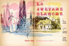 beuville-sultane-blanche-20