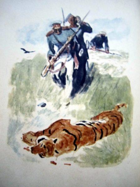 Evdokimenko-tigre-06