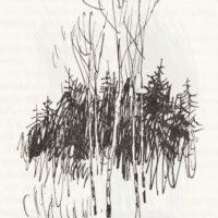 beuville-pouchkine-nb-03