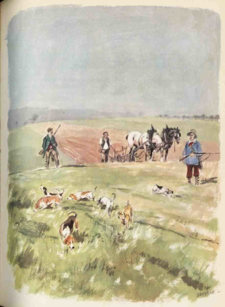 beuville-chasseur-chien-courant-06