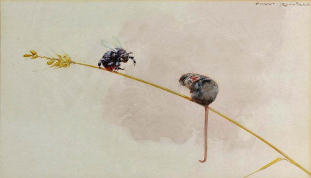 n.d. Mouse and Bee watercolour 22 x 37 cm