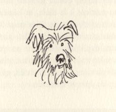 beuville-chasseur-chien-arret-01