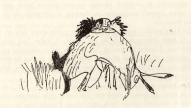 beuville-chasseur-chien-arret-15