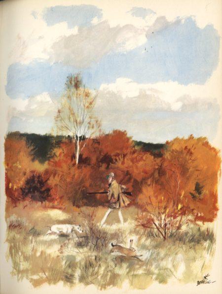 beuville-chasseur-chien-arret-17