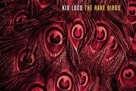 kid-loco-the-rare-birds