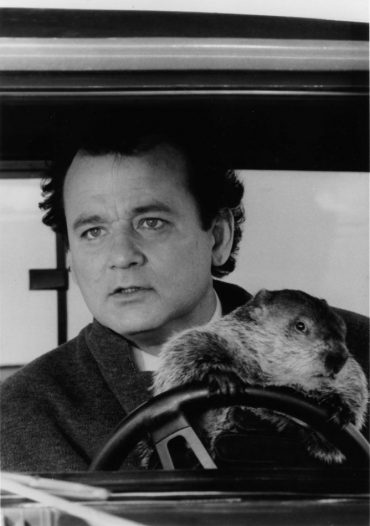 groundhog day wallpaper for mobile.jpg (1884×2676)
