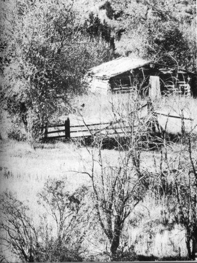 la cabane des sœurs Bassett