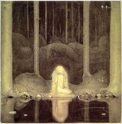 un reflet dans la forêt
